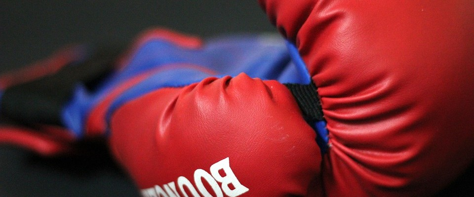 boxing-gloves-390432_960_720